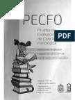 Instrucciones y Registro PECFO.pdf