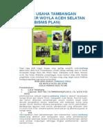 Rencana Usaha Tambangan Emas Kr Woyla Aceh Selatan