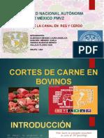 Cortes de La Canal en Bovinos y Porcinos (1)