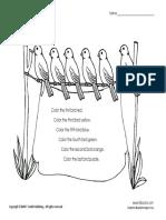 COLOUR BIRDS.pdf