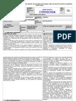 Formato Planificación Segundo Bachillerato Química