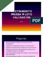 prueba piloto.pdf