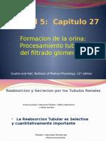 Cap 27 Proc Tubular.pptx