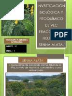 Investigación Biológica y Fitoquímico de Vlc Fracción de Hojas de Senna Alata.