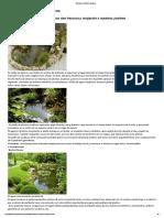 ARTE Y JARDINERÍA DISEÑO DE JARDINES_ Estanques y jardines acuáticos.pdf