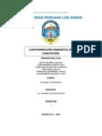 Contaminacion en Concepcion
