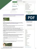 Estanques de jardin_ mantenimiento_.pdf