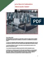 SE_y_Banco_de_Condensadores_aislado.doc