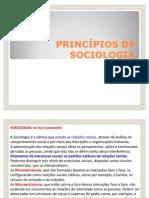 Sociologia - PRINCPIOS DE SOCIOLOGIA