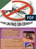 Hoja Informativa de Dengue