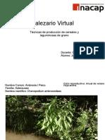 Malezario-julian semler 2010.pdf