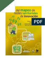 5 Manual de Etapas de Mapeo de Redes Territoriales de Innovacion-1