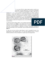 Hepatitis c Virologia