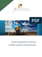 299569018 Manual Bombeo Mecanico Cavidades Progresivas