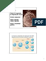 T2 Meiosis.pdf