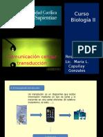 Comunicacion Celular Amb II