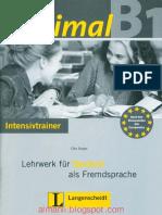 Intensivtraner.pdf