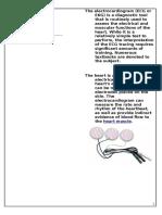 ECG Overview