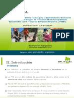 4. Difusión Empresa Trabajador, PPT TMER.pdf