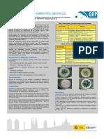 Micotoxinas en ambientes laborales.pdf