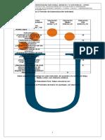 Anexo 2 Formato de Autoevaluación Coevaluacion e Introduccion