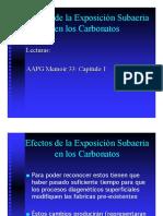 Carbonatos Efectos de Exposicion Sub Aerea. AAPG