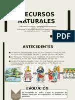 RECURSOS NATURALES exposición