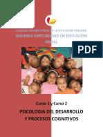 c.1 y c.2 Psicologia Del Desarrollo y Procesos Cognitivos (2)