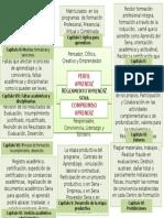 Mapa Mental Reglamento Sena