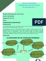 Bioelementos y Biomoleculas