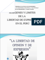 Márgenes y Límites de Las Libertad de Expresión
