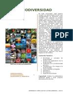 Investigacion Cultura Ambiental- Ejemplo