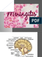 Meningitis (Akper)