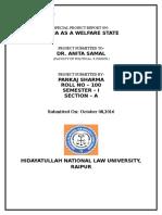 Political Science.100. Pankaj Sharma. Sem I. Special