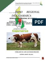 Mejoramiento del ganado Criollo y Mestizo en el Distrito de Cutervo - Cajamarca