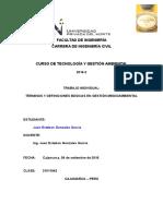 Pautas Trabajo Individual 1 - Terminologia Gestion Ambiental
