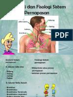 218956897-Anatomi-dan-Fisiologi-Sistem- journal.pdf