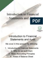 1.1 Financial Statement Audit