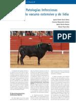 cys_31_64-70_Principales Patologías Infecciosas en el ganado vacuno extensivo y de lidia