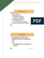Fonacion.pdf