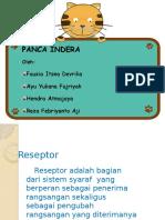 Sistem Panca Indra