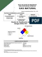HDS gasnatural_02.pdf