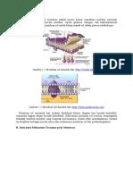 Mekanisme Transpor Membran