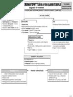 03INFECTIONS à DERMATOPHYTES DE LA PEAU GLABRE ET DES PLIS.pdf