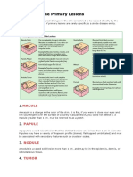 1. Primary and Secondary Lesions