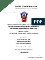 PROTOCOLO-METODOLOGIA.doc