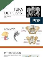 Fractura de Pelvis.pptx