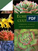 Echeveria Cultivars
