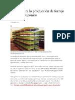 7 Pasos Para La Producción de Forraje Verde Hidropónico
