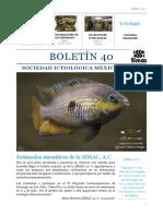 Boletín 40 SIMAC